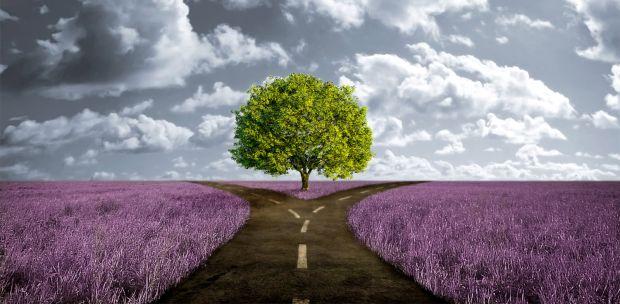 Encontre o seu propósito de vida e agregue mais valor a sua Marca Pessoal